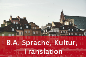 Icon - BA Sprache, Kultur, Translation
